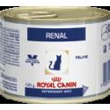 Cat Renal