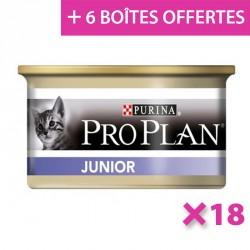 Cat Junior Poulet