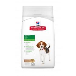 Canine Puppy Medium Agneau-Riz