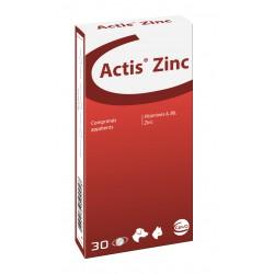 Actis Zinc