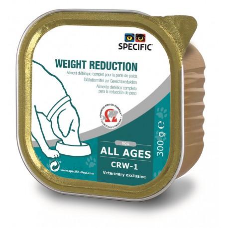 Chien CRW-1 Weight Reduction