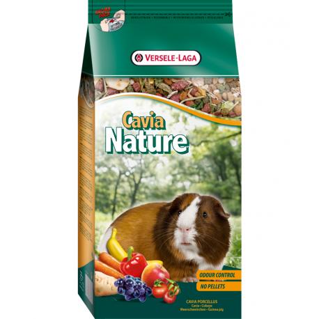 Cavia Nature Cochon d'Inde
