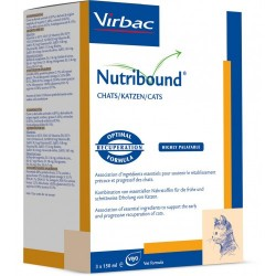 Nutribound Chat
