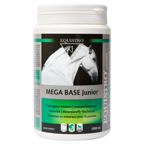 Equistro Mega Base Junior