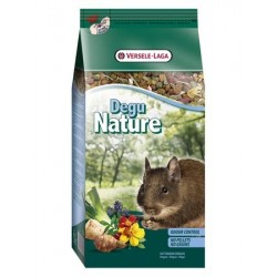 Degu Nature