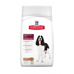 Canine Adult Medium Agneau-Riz