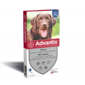 Advantix Grand Chien de 25 à 40 kg