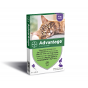 Advantage Chat et Lapin de plus de 4 kg
