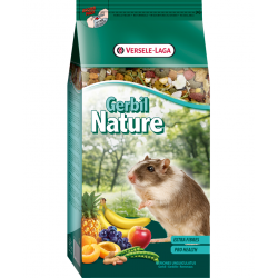 Nature Gerbille
