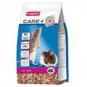 Care + Rat