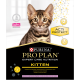 Chaton Expert Care Dinde